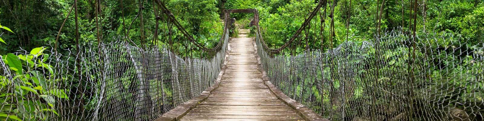 Ecuador Pontes e Floresta Ferias de tempo longo. Casas grandes e pequenas.